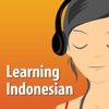 Learning Indonesian - The fun and easy self-paced course in Bahasa Indonesia, the Indonesian Language