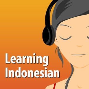 Learning Indonesian - The fun and easy self-paced course in Bahasa Indonesia, the Indonesian Language:the learning indonesian team