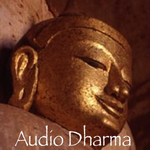 Cover image of Audio Dharma