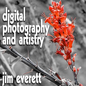 Digital Photography and Artistry
