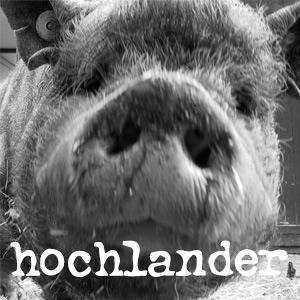 Hochlander