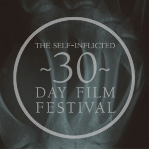 The 30 Day Film Festival