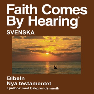 Svensk Bibeln (Dramatiserade) - Swedish Bible