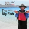 Big Fish artwork