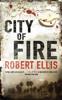 Robert Ellis - City of Fire kunstwerk