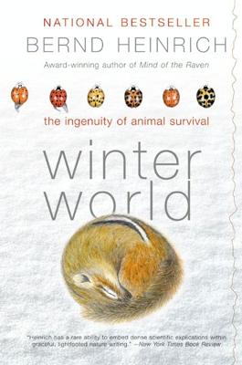 Winter World - Bernd Heinrich book