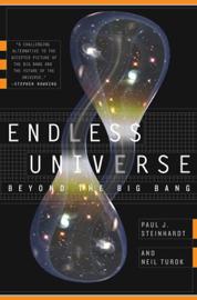 Endless Universe book