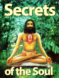 Secrets of the Soul book