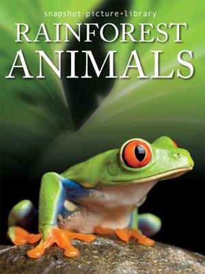 Rainforest Animals