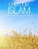 Ahmed Deedat - Christ in Islam artwork