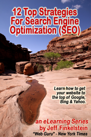 12 Strategies for Search Engine Optimization book