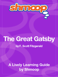 The Great Gatsby (Study Guide) book