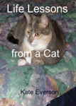 Life Lessons from a Cat