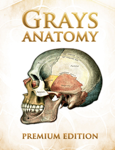 Grays Anatomy Premium Edition Libro Cover