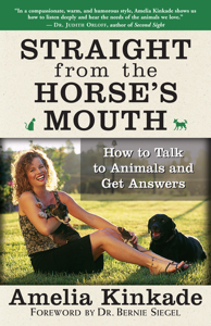Straight from the Horse's Mouth Couverture de livre