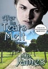 After The Tears Melt - Vol 1 The Muse Series 3