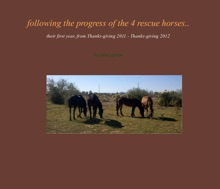 Following The Progress Of The 4 Rescue Horses...