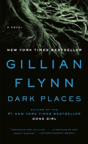 Gillian Flynn - Dark Places