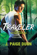 Traveler: Book One of the Druid Chronicles