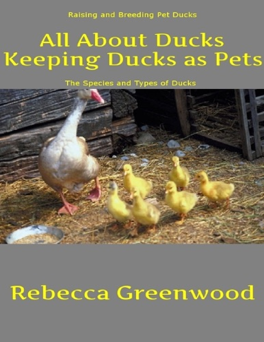 Rebecca Greenwood - All About Ducks