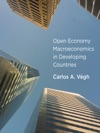 Open Economy Macroeconomics In Developing Countries