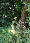 The Wavyside Beetle