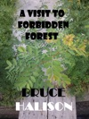 A Visit To Forbidden Forest
