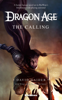 David Gaider - Dragon Age: The Calling artwork