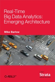 Real Time Big Data Analytics Emerging Architecture