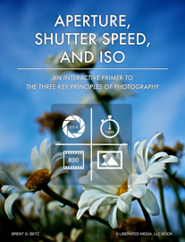 Aperture, Shutter Speed, & ISO: A Primer To The Three Key Principles Of Photography book