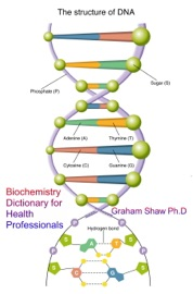 Biochemistry Dictionary For Health Professionals