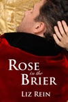 Rose In The Brier
