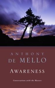 Awareness Book Cover
