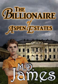 The Billionaire of Aspen Estates (The Concord Series #1)
