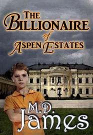 The Billionaire of Aspen Estates (The Concord Series #1) book