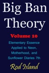 Big Ban Theory Elementary Essence Applied To Neon Motherhood And Sunflower Diaries 7th Volume 10