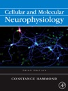Cellular And Molecular Neurophysiology