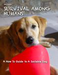 SURVIVAL AMONG HUMANS