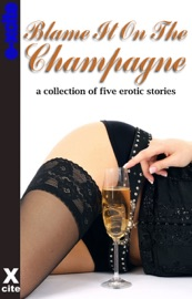 Blame It On the Champagne PDF Download