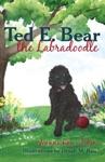 Ted E Bear The Labradoodle