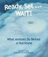 Ready Set    WAIT What Animals Do Before A Hurricane