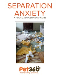 SEPARATION ANXIETY - A PET360.COM COMMUNITY GUIDE