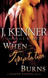 When Temptation Burns PDF Download