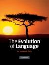 The Evolution Of Language