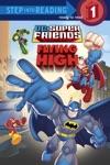 Super Friends Flying High DC Super Friends