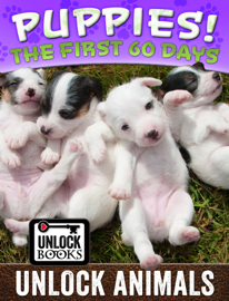 Unlock Animals - Puppies! book