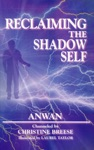 Reclaiming The Shadow Self Facing The Dark Side In Human Consciousness