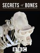 BBC Secrets of Bones