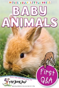 First Q&A: Baby Animals