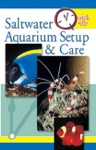 Quick  Easy Saltwater Aquarium Setup  Care